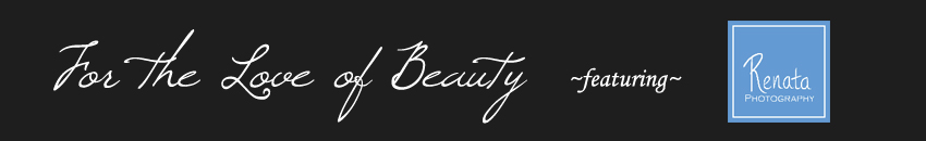 For the Love of Beauty Blog logo